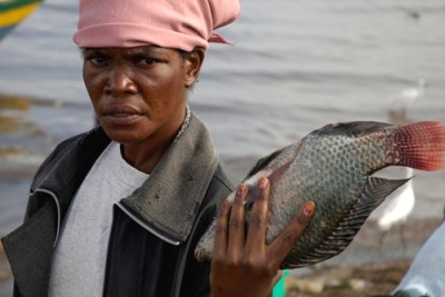 Kenya: A woman displays fish in lake Victoria.