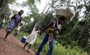 Arbitrary Evictions in Cote d'Ivoire's Protected Forests