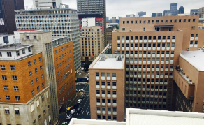 Johannesburg's 'Agripreneurs' Dig for Green Gold on Rooftops