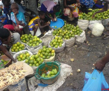 Seasonal Fruits In Liberia