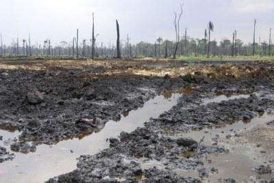 Shell au Nigéria
