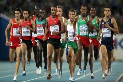 39 athlètes, dans 12 disciplines, prendront part aux JO de Londres