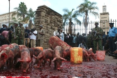 Kenyan civil society groups unleashed pigs and poured jerrycans of blood smack outside Parliament, as a gesture of contempt for MPs - labelled MPigs - for demanding higher pay.