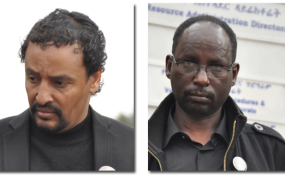 Ethiopia: Inside Ethiopia's Trial of Grand Corruption  Who