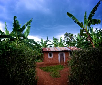 Curbs on Land Use Rights in Rwanda