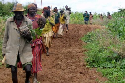 A study in Ethiopia found that a regional land registration and certification program increased food availability, particularly in female-headed households.