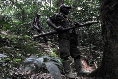 Des rebelles des FDLR dans la forêt de Pinga, dans l'Est de la République Démocratique du Congo,