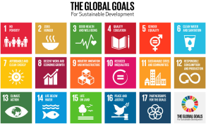 Morocco Tops Africa in Implementing SDGs