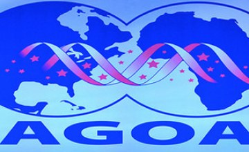 Is AGOA All That Africa Thought It Would Be?