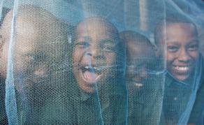 Journée mondiale du paludisme - La maladie en recrudescence