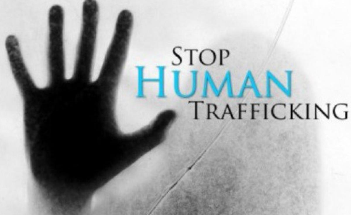 Nigeria Naptip Moves To Rescue 20,000 Nigerian Girls Trafficked To Mali - Allafricacom-9655