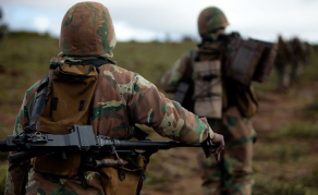 Probe Launched After South Africa, Mozambique Border Shootout