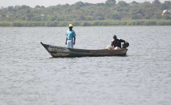 Kenya: Lake Victoria Fish Died Due to Lack of Oxygen – Experts