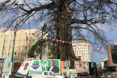 Posters for presidential candidates are placed around the Cotton Tree, the historic symbol of Sierra Leone, in Freetown.