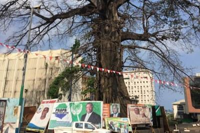 Des affiches des candidats à la présidence sont placées autour de l'arbre de coton, le symbole historique de la Sierra Leone, à Freetown.