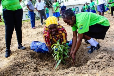 Lilian Haroni, 65, and a staff member of Myaradzo Funeral Assurance company plant a tree in Gweshe village, in Zimbabwe's Mashonaland Central Province.
