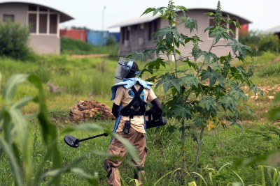 A member of the United Nations Mine Action Service (UNMAS) checks the presence of explosive devices near a UN base in Juba.