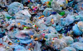 Journée mondiale sans sachets plastiques