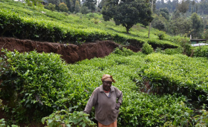 When The Ground Opened: Horizontal Landslides Hit Kenyan Villages