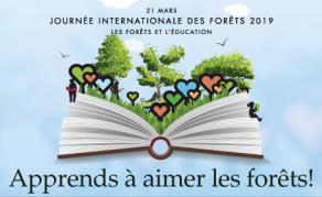 L'avenir des forêts - Un enjeu majeur pour la planète