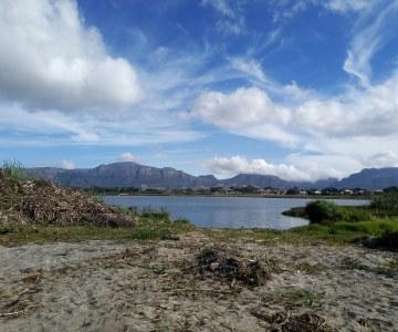 Cape Town Community Gets Behind Restoration at Princess Vlei