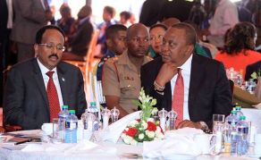 Somalia Hits Back, Bars Officials From Nairobi Meetings
