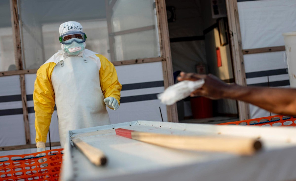 Nigeria: Nigeria At Alert As Ebola Breaks Out in Guinea – Agency