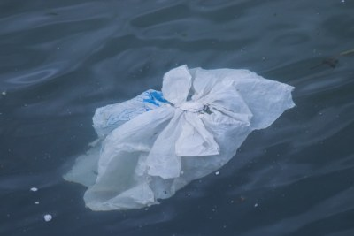A single use plastic bag floating through the water.
