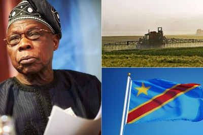 Obasanjo urges DR Congo to invest in agriculture.