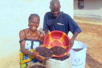 J Palm's work to empower rural farmers in Liberia has won multiple awards and funding, including from Johnson&Johnson <a href='https://jnjinnovation.com/africachallenge#section-1'>Innovation Africa</a>.