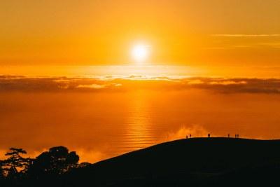 L'année 2020 a été l'une des années les plus chaudes jamais enregistrées, selon l'Organisation météorologique mondiale.