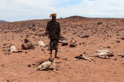 Residents of Bubisa village in Marsabit County show the devastating effects of drought in this picture taken on April 4.